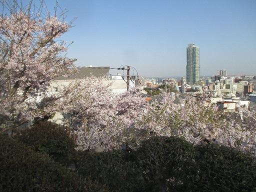 北野天満神社の境内から見た神戸の街