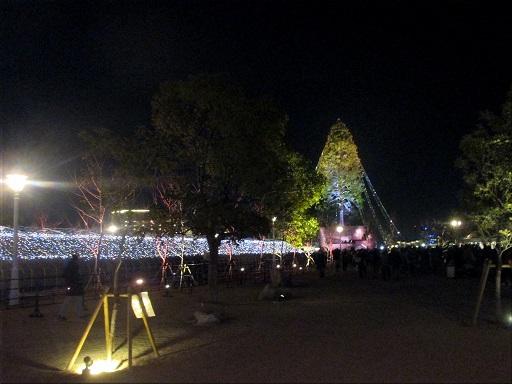 メリケンパーク 世界一のクリスマスツリー 9