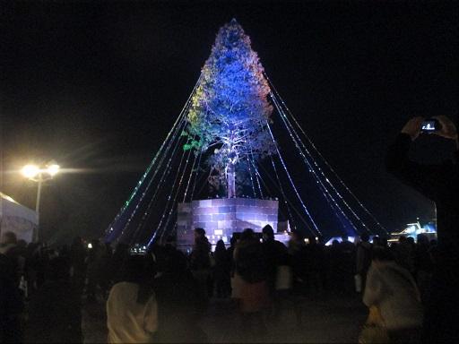 メリケンパーク 世界一のクリスマスツリー 10