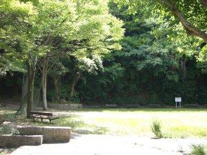 日差しの中の平野展望公園