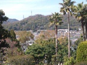 大倉山公園の中央部の丘から北側