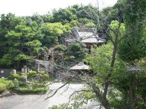 兵庫区の善光寺