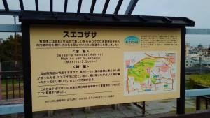 牧野植物研究所跡の碑 6