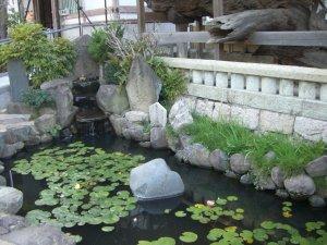 「敦盛公首洗いの池」と「義経腰掛けの松」