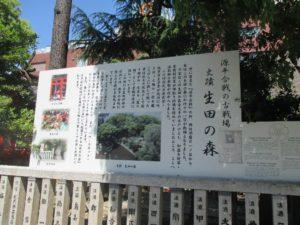 生田の森 説明板