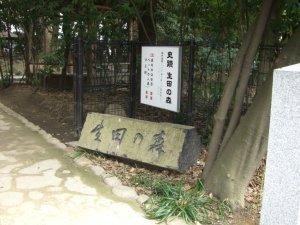 生田の森へ入っていく