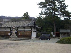 拝殿とアカマツの木
