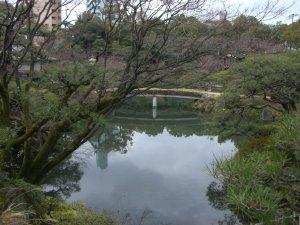 相楽園 日本庭園