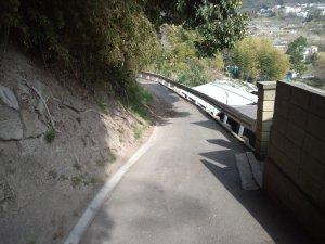 崖の下の道へ