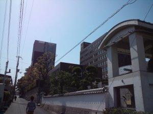 甲南大学の石垣