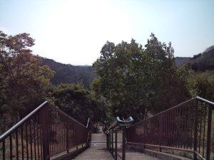 「白川方面」と書かれて所の階段を降りて行く