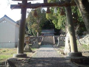 鳥居越しの拝殿