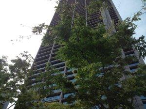 神戸市役所一号館を見上げる