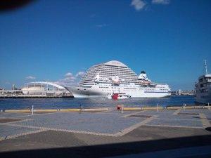 白い船体が美しい「ぱしふぃっく びいなす」