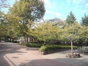 神戸市立王子動物園の園内