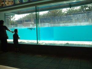 動物科学資料館 ホール