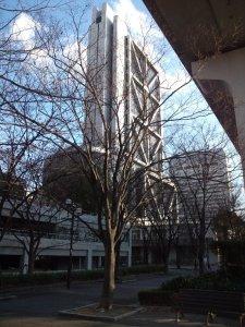 六甲アイランド 街路樹とビル
