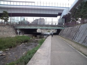 住吉川 遊歩道