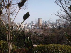 諏訪神社 神戸を展望