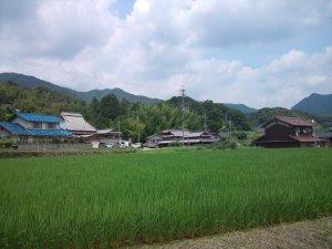 自然豊かな神戸の一角 丹生山田