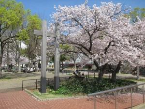 湊川公園の桜と将棋を指す人達