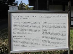 如意寺 6