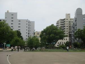 湊川公園でポケモンGOをやる人々