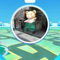 Fujiya Bear At Kobe