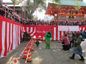 生田神社 節分祭 6