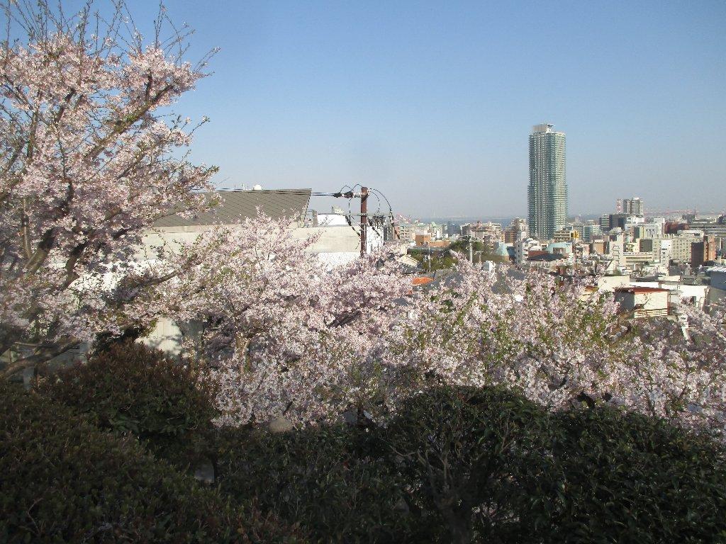 境内から見た神戸の街